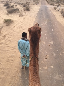 My camel and my driver.